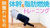 体幹と脂肪燃焼のトレーニング