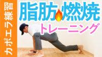 カポエイラ練習 脂肪燃焼の下半身トレーニング